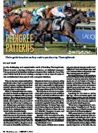 TrueNicks Thoroughbred Pedigree Patterns