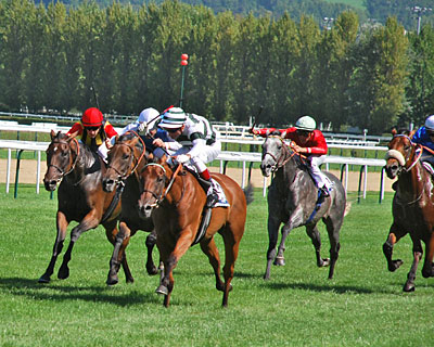 The week began with Immortal Verse upsetting Goldikova in the Prix Haras de Fresnay-Le-Buffard Jacques Le Marois (Fr-I).