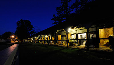 The calm before the day begins: Todd Pletcher's barn at 4:45 AM.