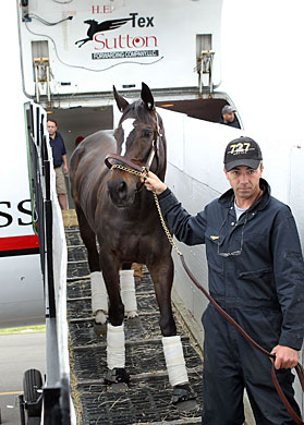 Zenyatta arrives Oaklawn Park via a chartered plane.
