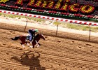 Images from Preakness week 2013