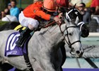 2009 Breeders' Cup World Championships - Day One