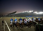 Dubai Super Saturday Preview