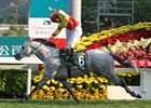 Week In Photos: Hong Kong Cup 2011