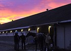 2011 Breeders' Cup Sights