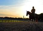 2013 Belmont Stakes Week