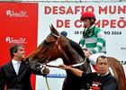 Jockey Champions Challenge of Brazil