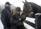 Zenyatta at the Farm
