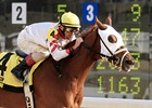 The Week In Photos: Delta Downs Jackpot Day 2011