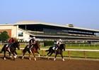 2014 Belmont Stakes Week