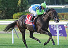 Snow Top Mountain Eyes First Stakes Victory
