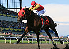 Autumn No Easy Task for Queen's Plate Winner