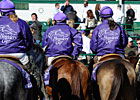 Slideshow: The Sights of Breeders' Cup 2011