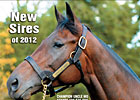 Slideshow: New Sires of 2012