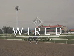 ABR Wired: Derby Dreams