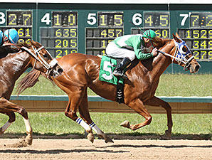 A J Marie wins the Ingrid Knotts Stakes.