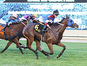 A P Is Loose wins the 2015 Blair's Cove Stakes.