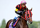 New York-Bred A Shin Forward Wins Japan Mile