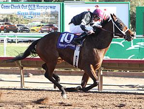 Az Ridge wins the 2012 Luke Kruytbosch Stakes.