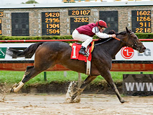 Abby's Angel wins the 2009 Indian Maid.