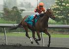 Academic Pulls 66-1 Woodbine Oaks Upset