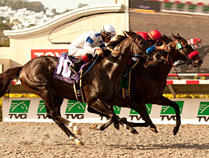 Acclamation wins the Pacific Classic, right, beating Twirling Candy, left.