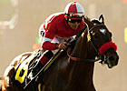 Acclamation to Stand at Old English Rancho