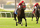 Acclamation Likely Out of Pacific Classic