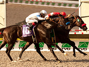 Acclamation Pulls Off Pacific Classic Heist
