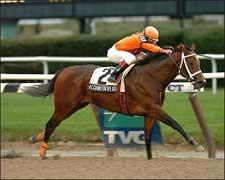 Accountforthegold Rushes to Stuyvesant Win