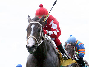 Aces N Kings wins the 2010 Minstrel Stakes.