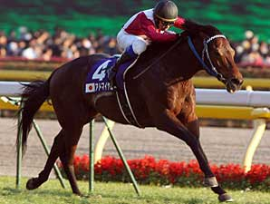 Darley Japan Loses JRA License