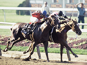Affirmed's Owner Ready to Pass the TC Torch