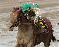Afleet Alex Stays Unbeaten With Hopeful Win