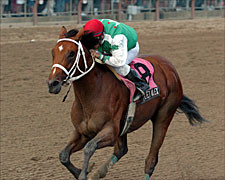 Afleet Alex Sets Stakes Record in Sanford
