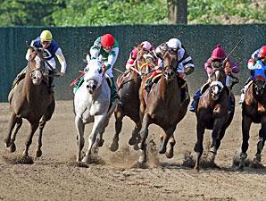 Afleet Express wins the 2010 Pegasus.