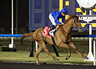Dullahan Unplaced in Burj Nahaar