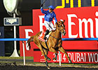 2015 Dubai World Cup Carnival Dates Released