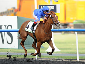 African Story wins the 2012 Godolphin Mile.