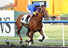 Godolphin's African Story Wins Godolphin Mile