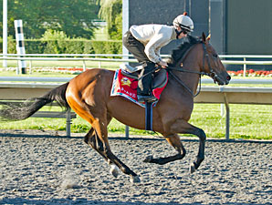 Afsare - Arlington Park, August 17, 2012.