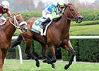 Ageless Still Possible for BC Turf Sprint