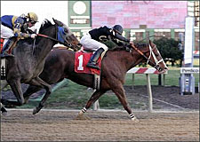 Win Machine Aggadan Takes Pimlico's Jennings