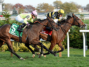 Aigue Marine wins the 2014 Long Island Handicap.