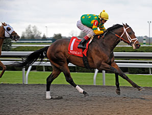 Aikenite wins the 2011 Commonwealth.
