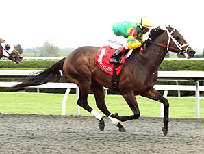 Graded Stakes Winner Aikenite Retired