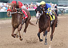 Favored Ailalea Holds Off Longshot in Dogwood
