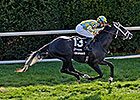 Cymric Draws Lucky 13 in Juvenile Turf