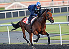Hong Kong May Have Arlington Million Runner