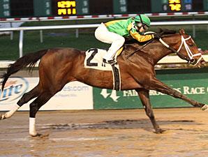 "Al Muhtasib wins the 2011 ""Buddy"" Diliberto Memorial."